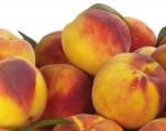 购买 Yellow Peach Puree Concentrate