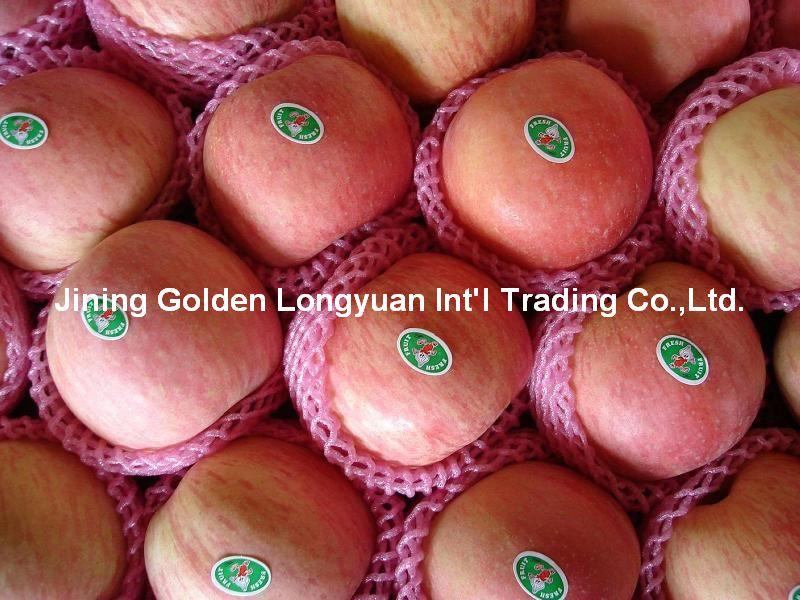 Buy Fresh Red Fuji apple