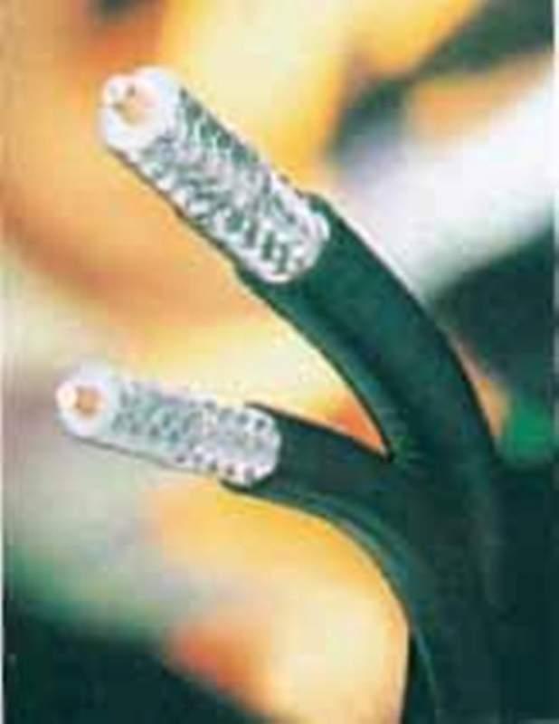 Buy 中轴电缆