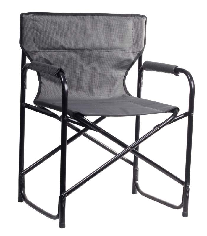 Buy Director Arm Chair