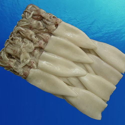 购买 Frozen squid tubes+tentacles (todarodes pacificus)