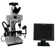 购买 WBY-6C比较显微镜比对显微镜