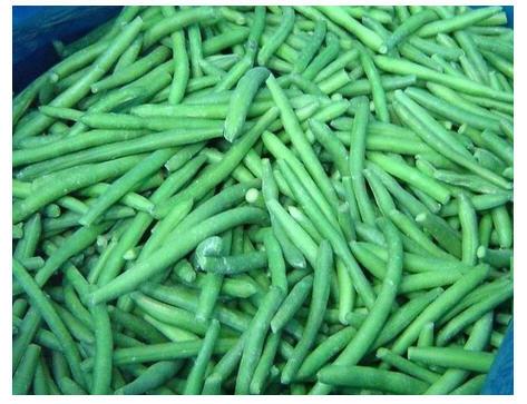 Buy IQF Green Bean Cuts