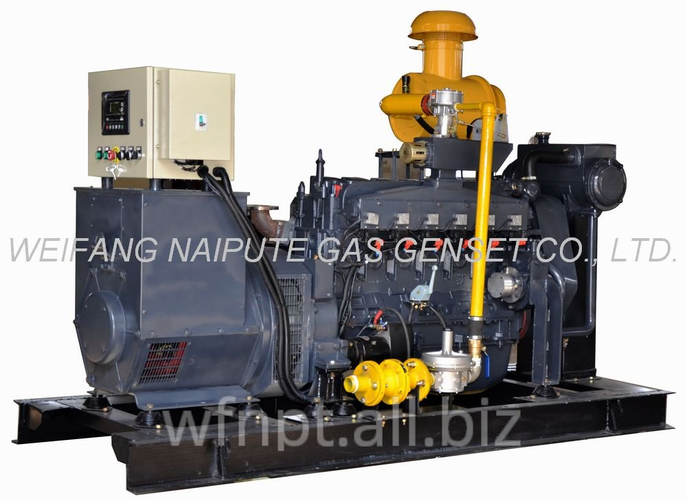 100kW Natural Gas Genset with CHP