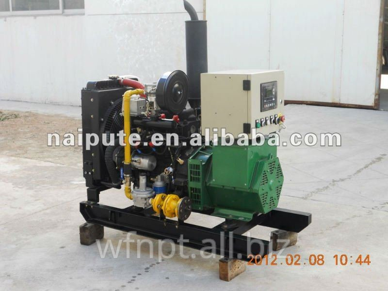 10GFT/10kW Residential use NG/LPG generator set