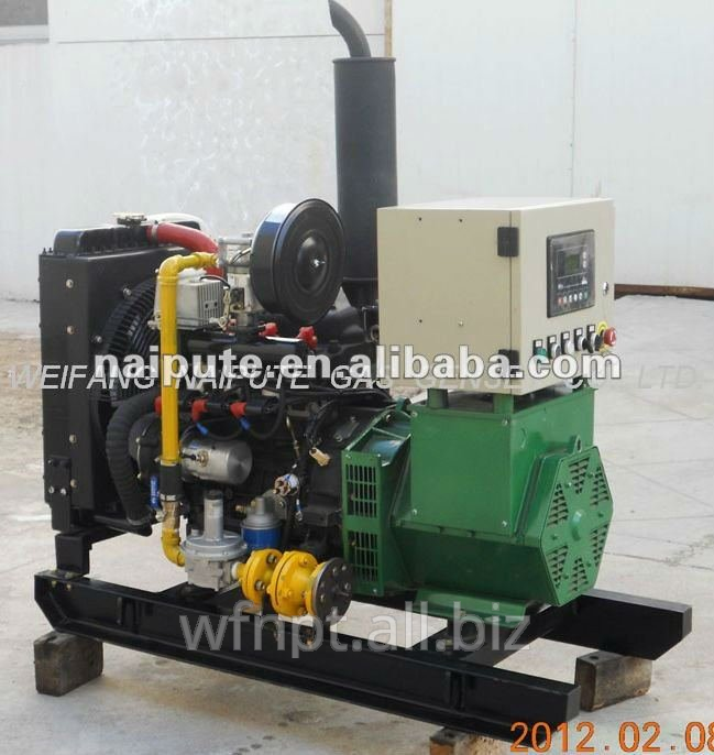 10kW home use natural gas generator