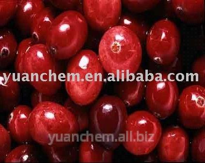Buy Cranberry extract