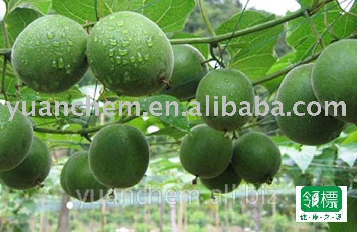 Buy Momordica fruit extract