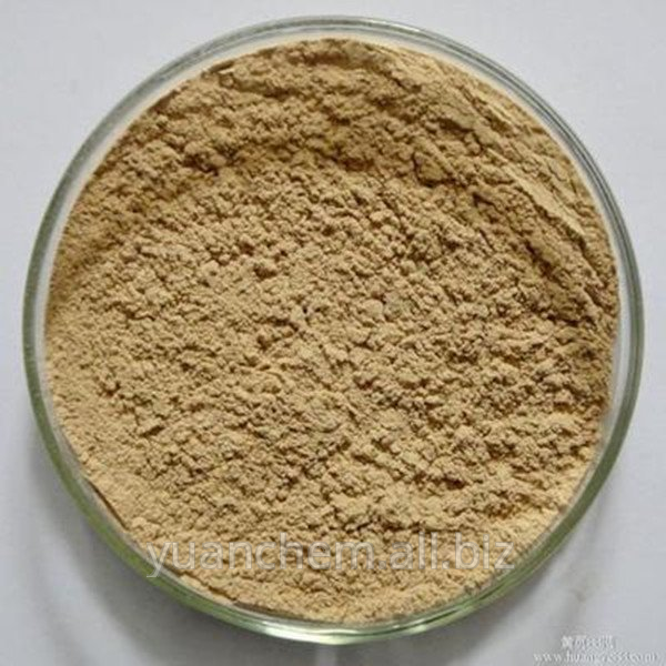 Buy Pure green coffee bean extract
