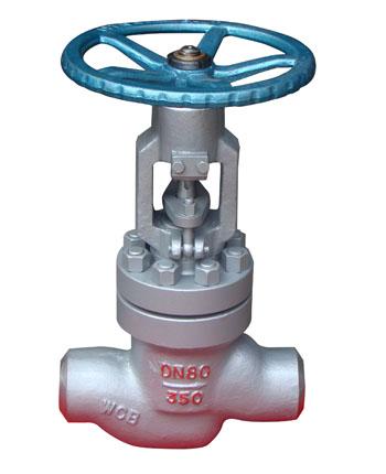 购买 The power station Globe valve