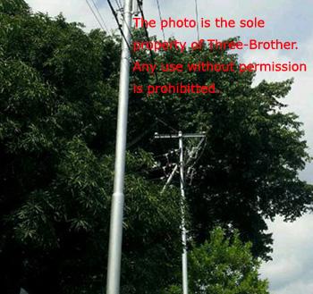 购买 Electric poles