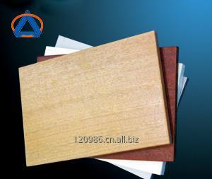 购买 Aluminum Special-shape Panel CMD-SS001