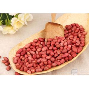 购买 Pre - pressing and Leaching Process of Peanut