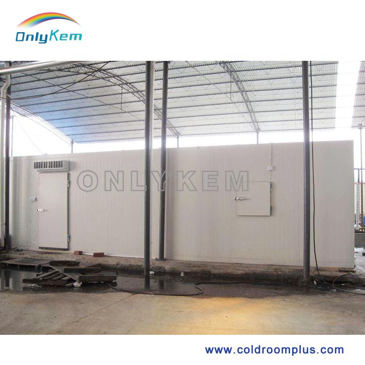 购买 水果经销商用冷库 , www.coldroomplus.com