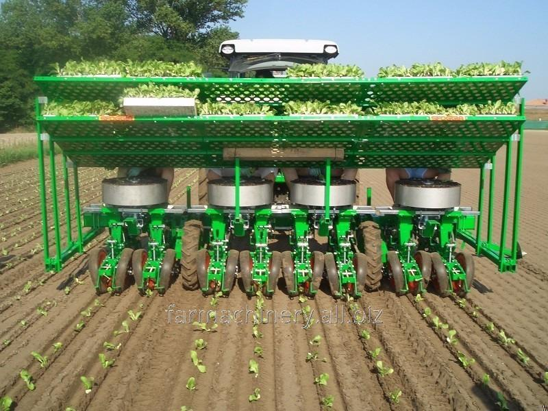 Seedling Transplanter