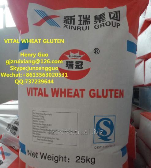 Buy  Vital Wheat Gluten