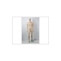 Female mannequin-wrapped clothing with iron circle head S8
