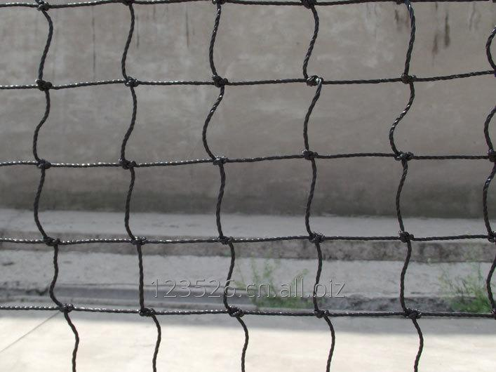 Buy Tennis Net