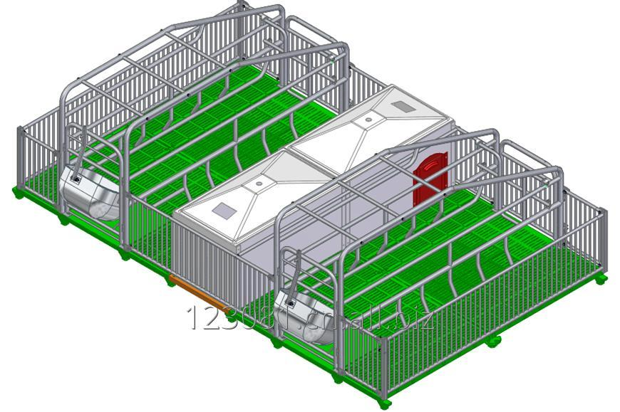 Buy Farrowing crate