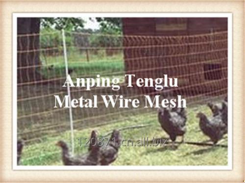 Buy Chicken Wire Netting