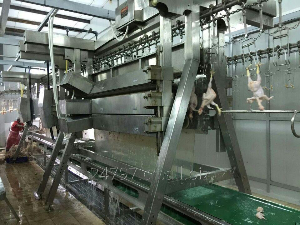 Buy Good quality Chicken plucker for poultry slaughterhouse