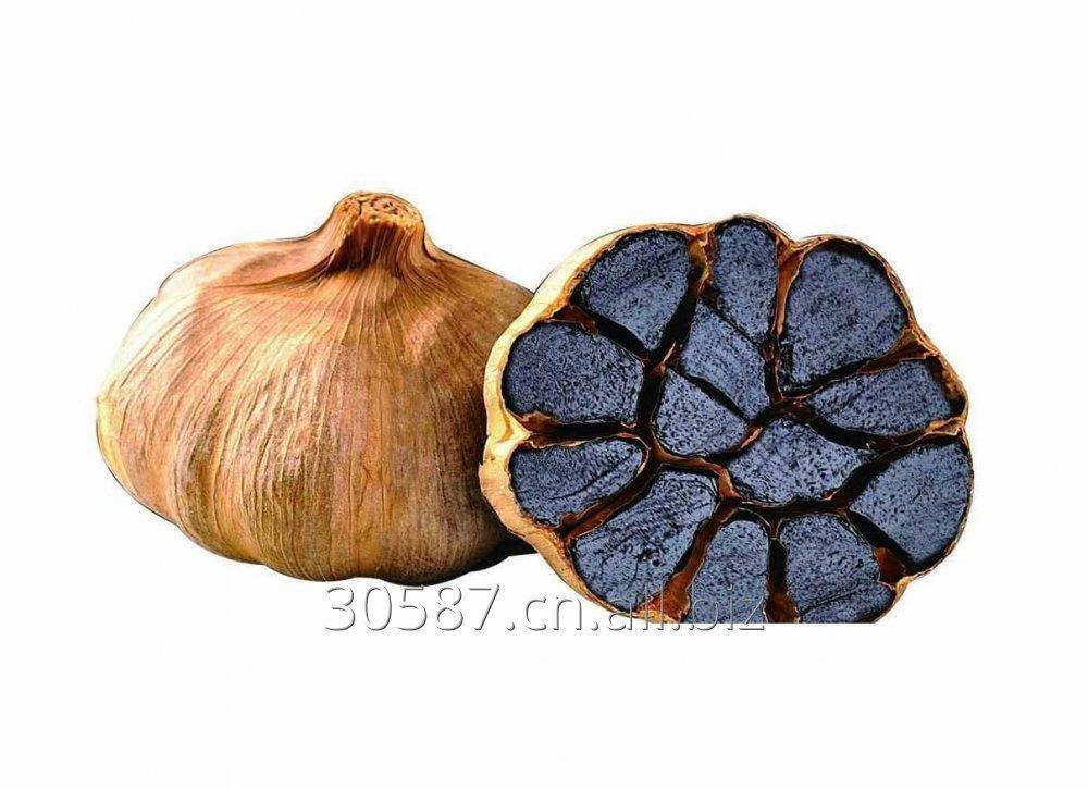 Buy Black Garlic Extract