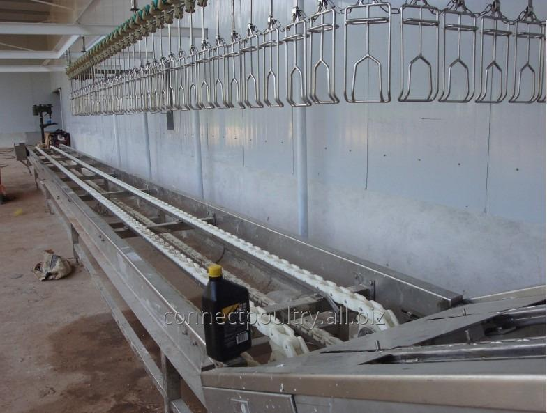 Buy Crates conveyor for Birds receiving machine poultry processing plant equipment