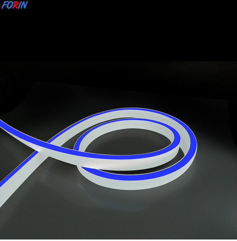 Flexible neon 12 volt