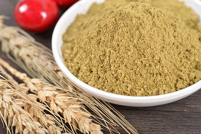 Buy Natural Spice Fennel Fruit Power