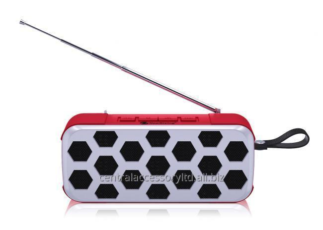 NewRixing NR-3019FM Small Outdoor Speaker