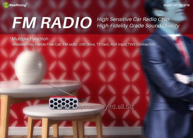 NewRixing NR-3019FM