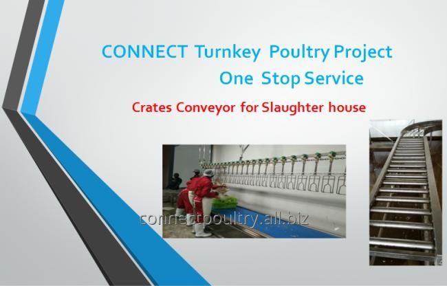 poultry processing equipment of crates conveyor