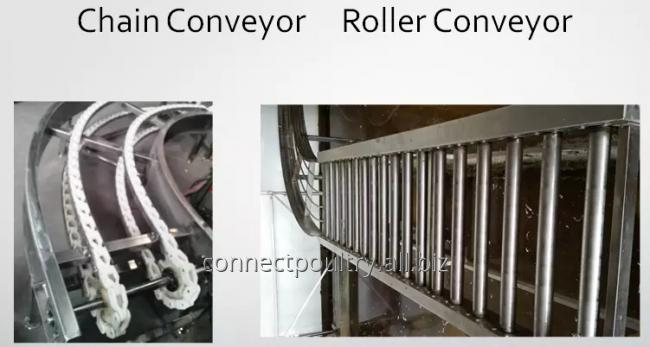 different models of crates conveyor
