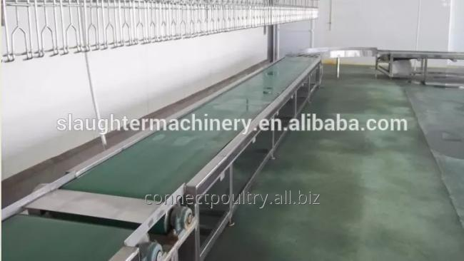poultry processing equipment of belt crates conveyor