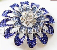 Brooches (jewelry)