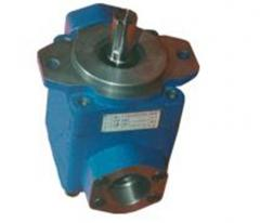Rotary vane-type pumps