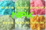 Soluble NPK Fertilizer (12-03-43+TE)