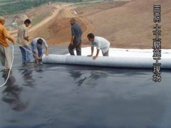 Geotextile for pond