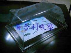 Изделия из пластика и стеклопластика