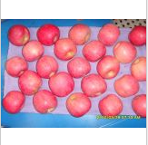 """Yufeng""Fresh Apple (ANY KIND!"