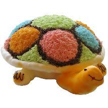 蛋糕 -彩龟