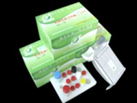 Nitrofuran (AHD) ELISA Test Kit
