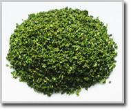 绿钟辣椒片