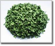 韭菜绿色叶