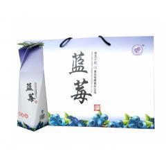蓝莓果脯纸袋装(多边形)