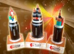 0.6/1kV及以下聚氯乙烯绝缘电力电缆