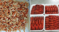 Frozen crayfish WR/tail meat