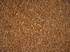 Roast Buckwheat kernels