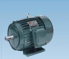 AEEF三相异步电动机
