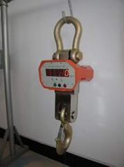 OCS-XZ电子吊秤
